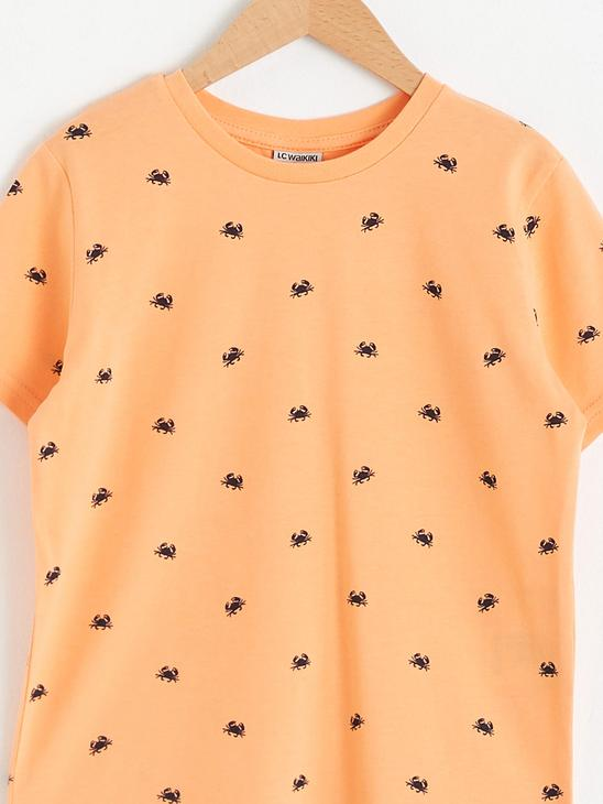 CORAL - Boy's Printed Cotton T-Shirt - S13504Z4