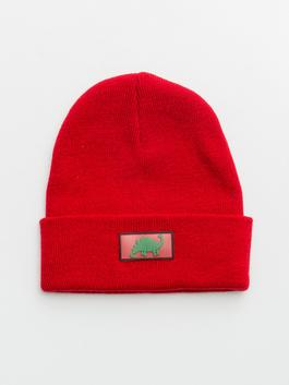 RED - Boy's Dinosaur Printed Tricot Beret