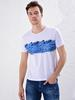 WHITE - Crew Neck Printed Combed Cotton T-Shirt - 0SF375Z8